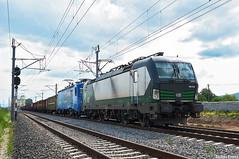 ELL 91 80 5193 215-1 @ Bărăbanț (Andrei Pintea) Tags: ell european locomotive leasing train tren romania siemens vectron locomotiva electric electrica 91 80 5 193 5183 215 1 eloc germany barabant alba iulia softronic trans montana 024