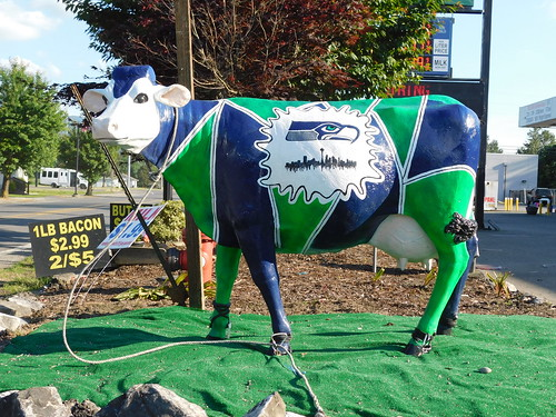 Seahwaks Dairy Cow