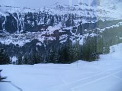 ... /\ ... ... ... (project:2501) Tags: wengen jungfrauregion suisse switzerland snow ski travel train bahn mürrenbahn mountainrailway cograilway theviewfromhere inthemountains mountains mountain rock pinetrees alpinefauna ground snowontheground