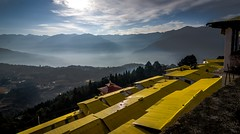 """Twilight"" (Sudeep Nandi) Tags: firstlight beautifullandscape layers lightshadow sunrise mountains view monastery northeast mist nikoncafe rooftop wintermorning yellow dawn daybreak beginning greencover clouds backlight twilight tokina1116 lightbeautiful"