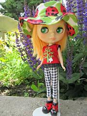 Ladybug Wear