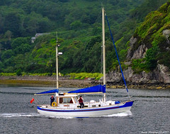 Scotland West Highlands Argyll Kyles of Bute three old men in a old cabin cruiser called Boucanier 21 June 2017 by Anne MacKay (Anne MacKay images of interest & wonder) Tags: scotland west highlands argyll kyles bute old men cabin cruiser boucanier sea shore cliff landscape xs1 21 june 2017 picture by anne mackay