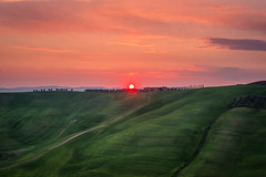 DSC_0135.jpg (saladino85) Tags: landscape sunset hilltop italy hills holiday tuscana blue tuscany scenery beautiful trees green rollinghills different corsano sunrise