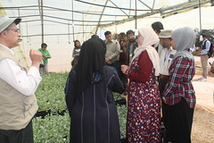 Forage options for smallholder livestock in water-scarce environments of Afghanistan (ICARDA-Science for Better Livelihoods in Dry Areas) Tags: forage smallholder afghanistan water scarce environment livestock women