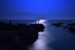 "The ""Torii"" of Oarai Shrine (Fred Lin) Tags: torri shrine moonlight long exposure japan ibarakiprefecture 鳥居 大洗町"