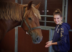Saturday at The Kent County Show. Abbey my little horse whisperer..... (favmark1) Tags: 2017 365 365challenge kent detling saturday kentcountyshow abbey shire shirehorse day168