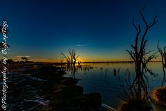 IMG_5411 (biglaptogs) Tags: barmera lakebonney riverland sa states