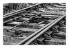 CAMBIO DE AGUJAS   ( Belfast-Irlanda ) (RAMUBA) Tags: blanco y negro belfast irlanda vias de tren cambio agujas