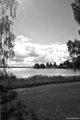 Estonie- Estonia (Sé198) Tags: sénamie steward 2016 photo noir blanc blanco negro white black estonia estonie kasmu viru folk festival mer baltique baltic sea mare baltico