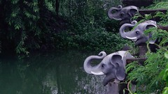 Elephants by the Pond (richard_fernando) Tags: freshness rainy rain rains monsoons tree nature greenery green artificialelephant elephanthead elephants elephant artificialpond water pond centralpark park india navimumbai kharghar