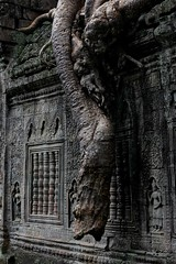 Preah Khan (holzer_r) Tags: archäologie tempel kambodscha archeological tree ruins jungle buddhist buddhismus temple wat angkor khan preah cambodia