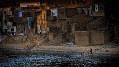 Badetag (Friedhelm Hofstetter) Tags: nikond200 ngc river fluss nile nil egypt ägypten egy