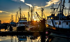 Fisherman's light (Christie : Colour & Light Collection) Tags: light goldenhour moored mooring fishboats sunset steveston richmond bc canada colorful sky fishermanswharf wharf dock reflections pier colourful golden seiner fishing boats