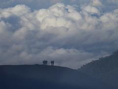 Walk among the Clouds II (Canis lupus alba) Tags: kawah ijen kawahijen indonesia java licin banyuwangi volcano caldera cloud hiking