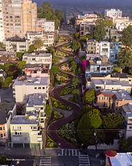 Lombard Street (davidyuweb) Tags: lombard street lombardstreet san francisco sanfrancisco sfist 三藩市 www