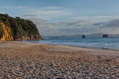 20170703-_BUD5915_HDR Hahei Beach 02 (hirschwrites) Tags: coromandelpenninsula earth hdr hahei nz newzealand northisland other