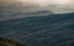 foggy on mount (Flutechill) Tags: mountain nature forest landscape hill outdoors scenics tree sky fog mountainpeak mountainrange summer ruralscene valley beautyinnature asia cloudsky travel greencolor thailand chiangmai