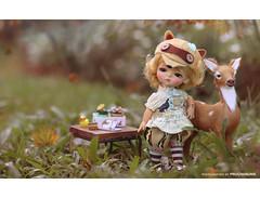 Lati Doll Mystic G.Belle - Shenzhen Limited ver. Raccoon (PruchanunR.) Tags: lati doll mystic gbelle ver raccoon