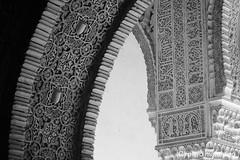 alhambra _ granada _ spain (piero.mammino) Tags: alhambra granada spagna spain arab muslim arabo musulmano sultano monumenti monocromo bianconero monochrome black white storia history arte art architettura architecture andalusia decorazioni decorations