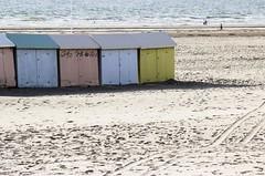 IMG_0480 (Azezjne (Az photos)) Tags: canon 75300 50 stm 600d berck sur mer bercksurmer cote côte dopale bromance plage sable bokeh zoom coucher soleil sunset beach sand eclipse dune mouette animaux animalière flou 75 300
