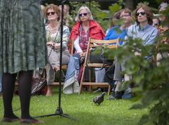 Zaterdag in de Prinsentuin: Marije Langelaar
