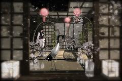 The Magnolia Festival (AGodenot) Tags: tlc ultra revival indieteepee keke 22769 japonica flecha