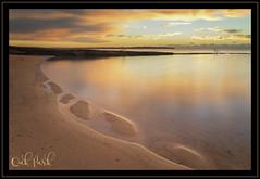Oak Park (Jo Langtry) Tags: aloneagain canon5div clouds coast le nisifilters nsw oakpark oakparkoceanpool ocean oceanpool rocks sigma35mmf14art sunrise sydney