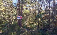 Lot 194 Carrington Road, North Arm Cove NSW