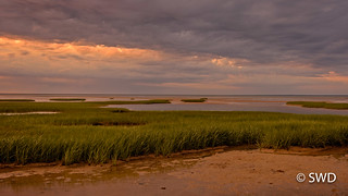 Cape Cod Bay, Early Evening at Low Tide