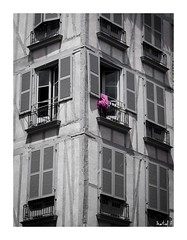 Le Signal (Martial F.) Tags: fenêtres windows volets shutters alignement alignment noiretblanc blackandwhite monochrome