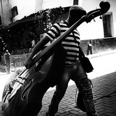 The Double-Bass fingerboard carry (Devin_Smith) Tags: doublebass instrument cuba havana habana street streetphotography