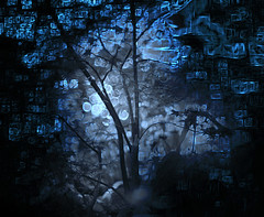 redand green 2z3 (duncan!) Tags: leica m240p zeiss sonnar 50mm f15 zmt midnight crystalworld shadows moonlight