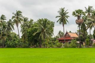 singburi - thailande 9
