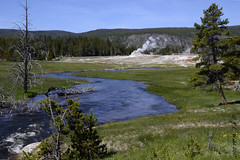 Firehole River and Castle Geyser (V. C. Wald) Tags: castlegeyser uppergeyserbasin yellowstonenationalpark tamron16300mmdiiipzd geothermalfeature