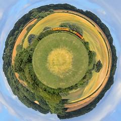 Barley twist with Colas 37175. Ketton, Rutland. 14 07 2017 (pnb511) Tags: ketton rutland fields barley agricultural rural train railway class37 colas networkrail testtrain diesel loco locomotive polartransformation