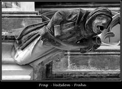Gargoyles - 22 (fotomänni) Tags: prag prague praha gargoyles gargouille wasserspeier skulptur skulpturen veitsdom blackwhite schwarzweis noirblanc manfredweis
