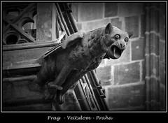 Gargoyles - 34 (fotomänni) Tags: prag prague praha gargoyles gargouille wasserspeier skulptur skulpturen veitsdom blackwhite schwarzweis noirblanc manfredweis