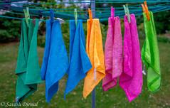 _DSF5557-HDR-Edit.jpg (Sav's Photo Gallery) Tags: abstract colour savash towels