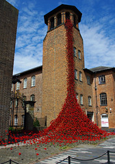 Weeping Window at The Silk Mill, Derby. (Blue sky and countryside) Tags: artwork ceramic poppies derby weepingwindow silkmill powerful firstworldwar creative moving red tower history heritage england pentax centenary paulcummins