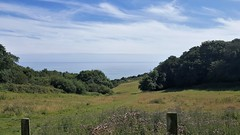 20170713_153056 (Sweet Mango 1965) Tags: hastings country park