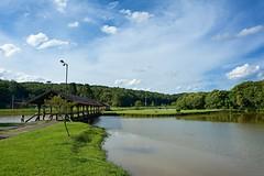 D52+1DSC_1698(1) (A. Neto) Tags: afsnikkor18105ged d5200 nikkor nikon nikond5200 color landscape lake bridge woods grass sky clouds nature