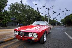 '1969 1750 GTV Alfa Romeo' (Saad Sarfraz Sheikh) Tags: vintage classic car auto travel collectors item jaguar mg roaster mercedes mercedesbenz alfaromeo building architecture portfolio lahore pakistan punjab esquire