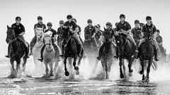 The Household Cavalry (Marcus Legg) Tags: marcuslegg canon eos 1dx beach monochrome blackandwhite atmospheric horses householdcavalry cavalry british army water waves wet splash