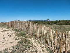 Playa de El Prat (efe Marimon) Tags: canonpowershots120 felixmarimon catalunya barcelona elpratdellobregat playa parquenatural
