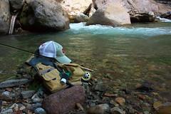 Hybrid Pack Vest DSC_3764 (touhenboku) Tags: iwana char イワナ fly fishing flyfishing rock stream headwater fall