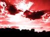 Le choc des Titans (François Tomasi) Tags: clouds cloud sunset sunrise lights light yahoo google flickr françoistomasi reflex nikon nuages nuage soleil sun photo photography photographie photoshop lumière red rouge indreetloire touraine france europe pointdevue pointofview sky juillet 2017 couleurs couleur colors color contraste filtre pov composition sombre dark arbres arbre trees tree