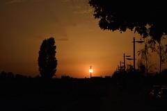 _DSC0599 (Juan M. Galiñanes) Tags: sonnenuntergang sunset puestadesol atardecer zaragoza españa siluetas contraluz