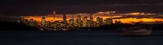 Sydney Skyline from Watsons Bay