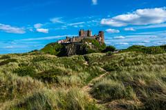 Around Bamburgh Castle (ola_er) Tags: castle england northumberland uk nikon bamburgh dune landscape view