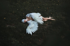 Aliferous (aleah michele) Tags: wings wing feather feathers fight fall fallen grass tree angel harpy conceptual conceptualportrait concept calm cold vulnerable tragic tale torn tired white fairytale fantasy injured injury beautiful strong broken